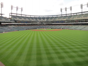 Field of Comerica Park